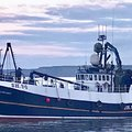 Steel Trawler - picture 5